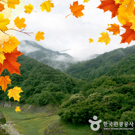 181021 Autumn Korea