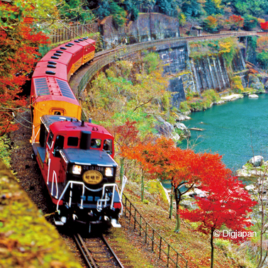 Autumn Colors in Tokaido ** Momiji