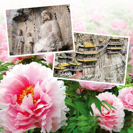 2020.04.09 Spring Blossom of China - Peony Festival UNESCO Brilliant Culture and Art Tour