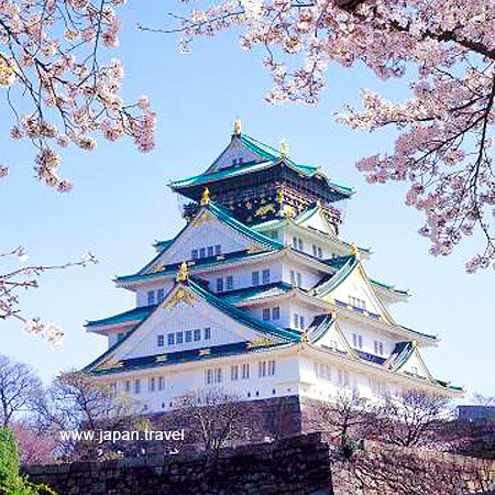 2020.03.27 Cherry Blossom in Osaka & Tokyo