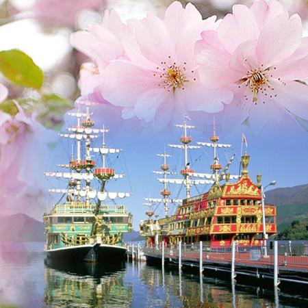 2020.03.10 Japan Kyushu Spring Flowers Cruise
