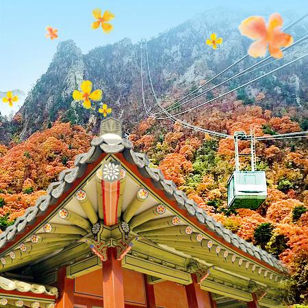 2020.10.24 Autumn Korea